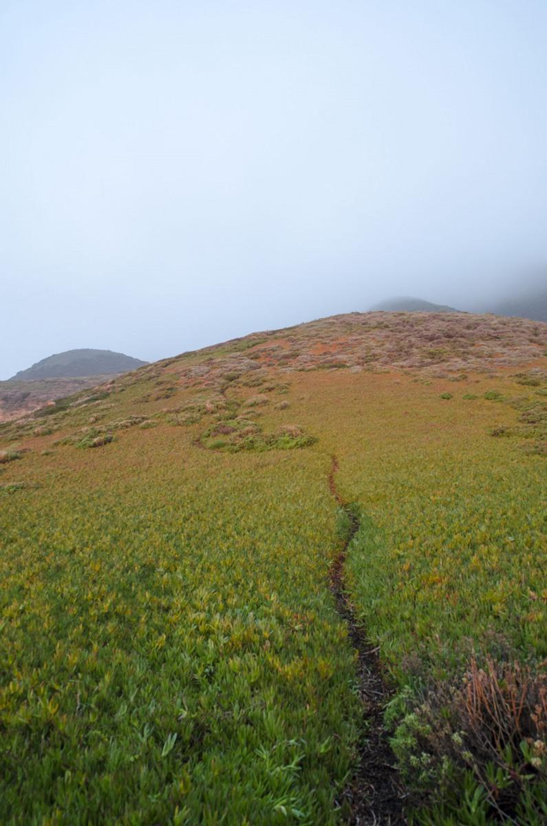 Colour-hill-small
