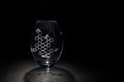 Engraved Glass by Alice Antliff