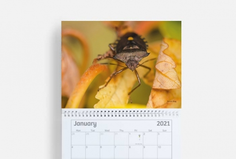 SOLD OUT! 2021 Calendar